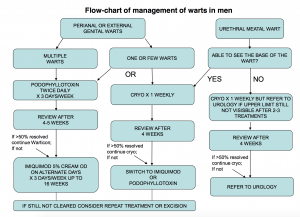Fig 3 - BASHH flow-chart for the management of anogenital warts in men.